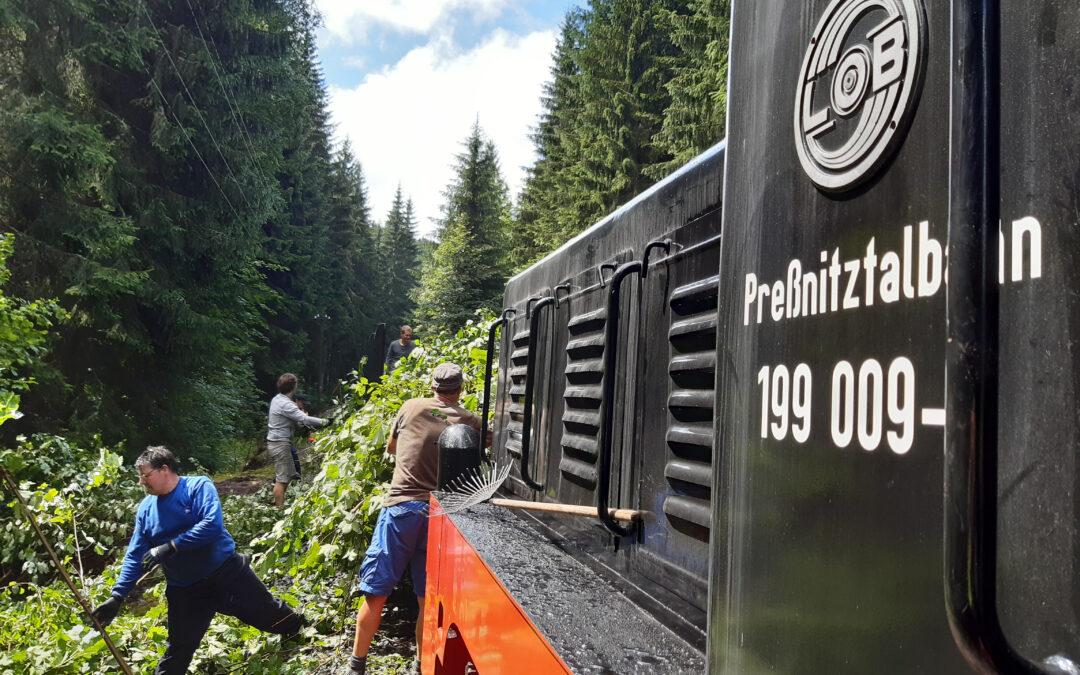 #90 Workcamp in Mountain region Krušnohoří
