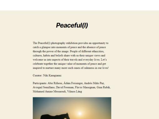 #84 Peace Box