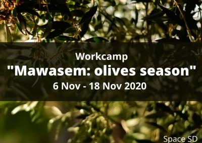 #53 Mawasem: Olives Season